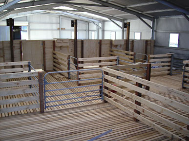 Kendrick Sheds - wool sheds and eco shelters